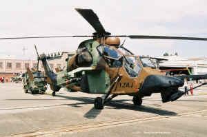 F-ZVLJ_Tigre.JPG (115917 octets)